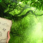 Dschungel mit Landkarte