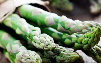 Feldsalat mit grünem Spargel und Ziegenkäse
