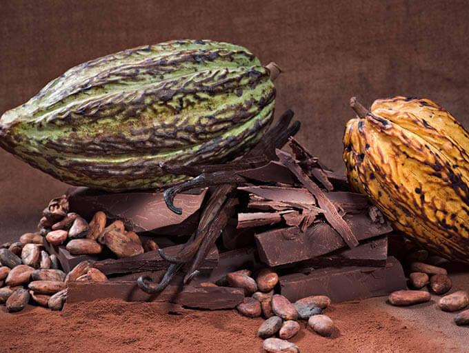 Schokolade, Kakaobohnen