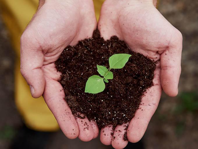 Nachhaltigkeit und Naturschutz